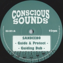 "10"" SANDEENO - GUIDE & PROTECT"