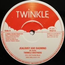 "12"" TWINKLE BROTHERS - JEALOUSY AND BADMIND"