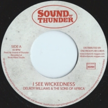 "7"" DELROY WILLIAMS & THE SONS OF AFRICA - I SEE WICKEDNESS"