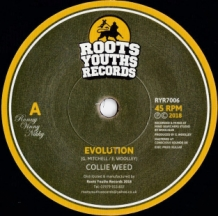 "7"" COLLIE WEED - EVOLUTION"